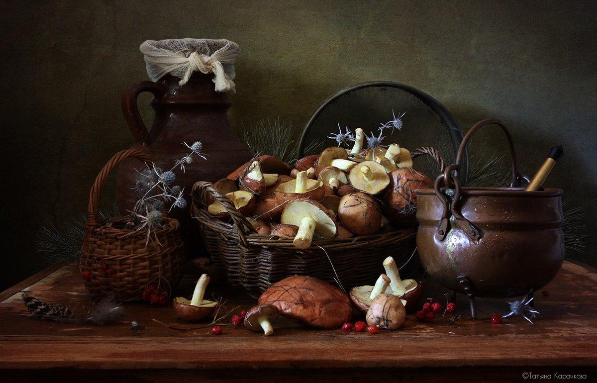 поэтому грибы натюрморт фото панацеи всех
