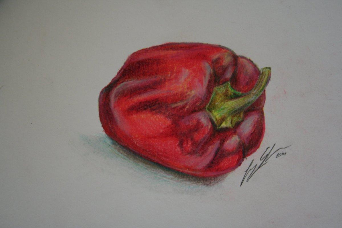 Болгарский перец рисунок карандашом