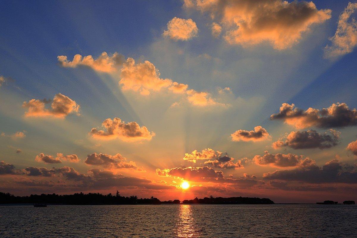 картинка золотой рассвет играет