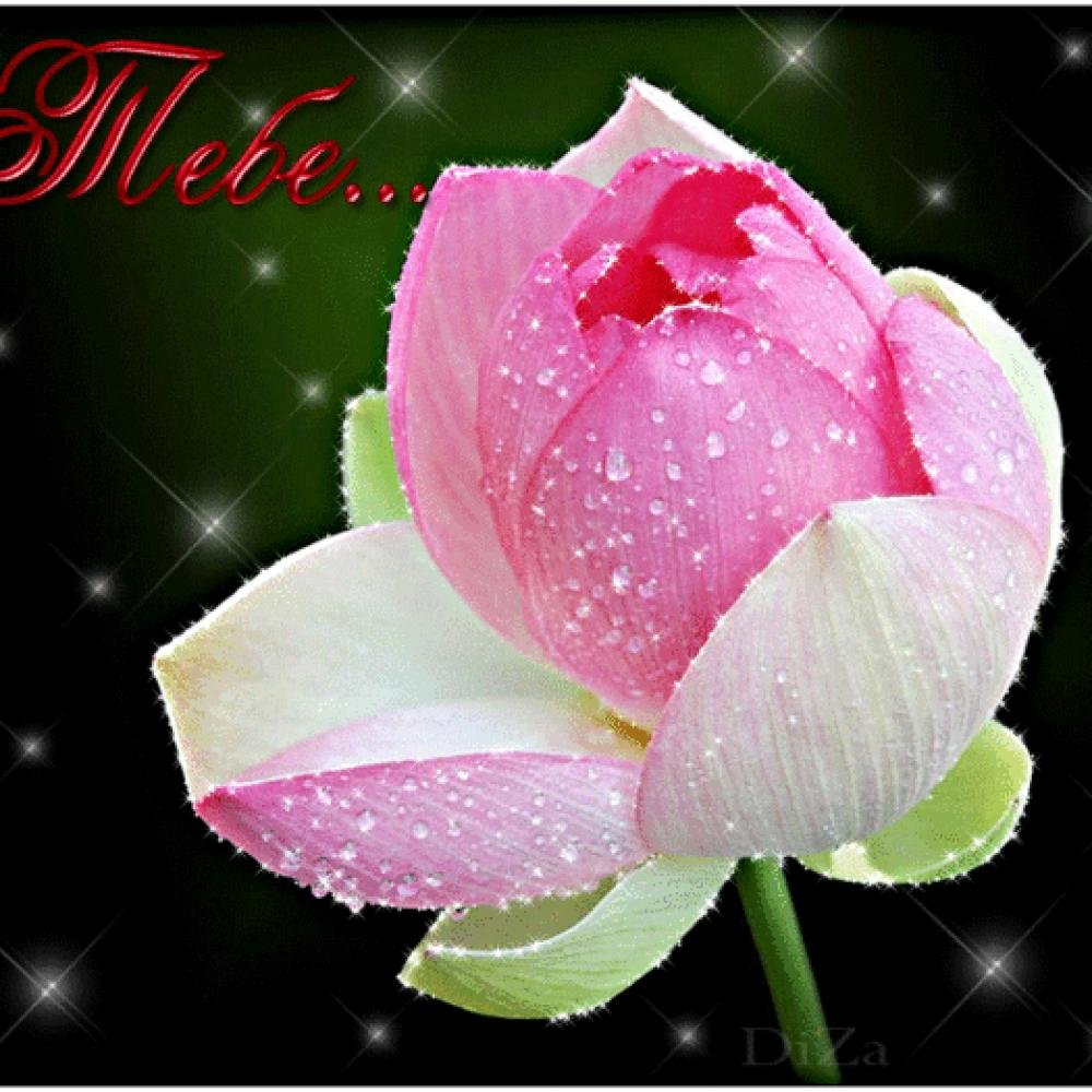 Маме, открытка мерцающие цветы