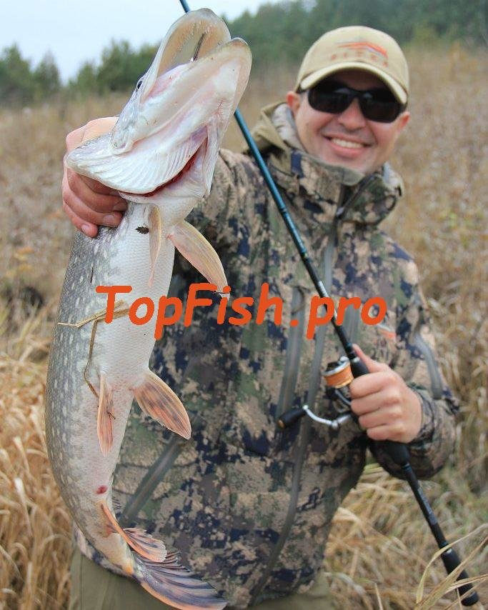 официальный сайт по продаже активатора клева fish xxl тут