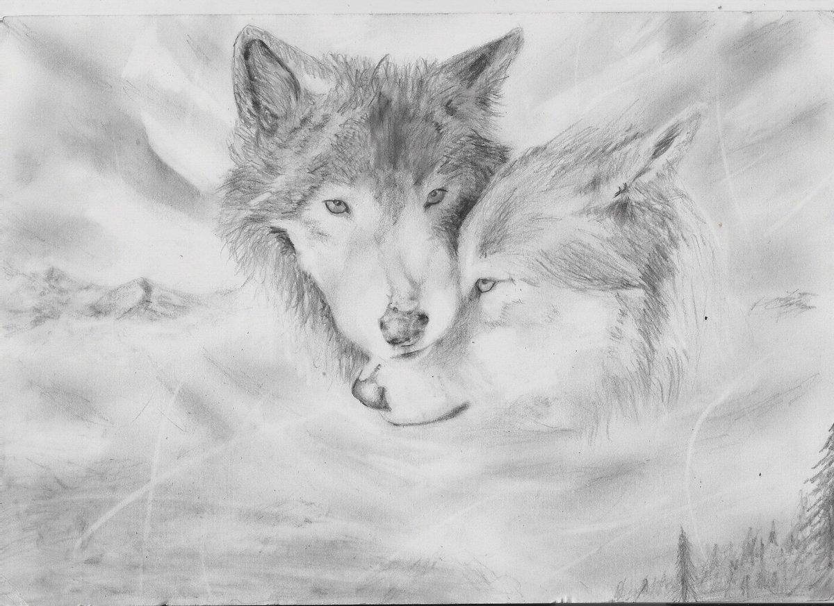 Крутые картинки карандашом волки, открытке цифры
