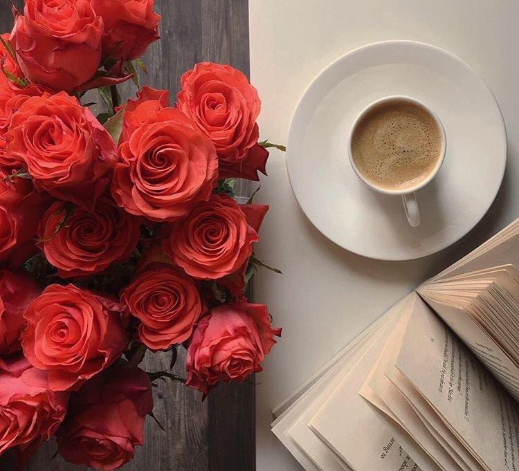 Открытка доброе утро роза, мишка