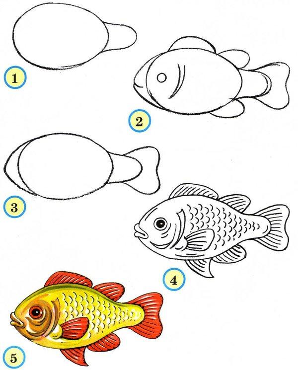 Картинки для рисования для начинающих детей