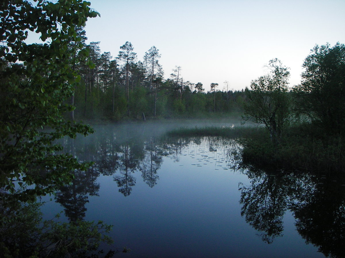 Фото реки черной карелия