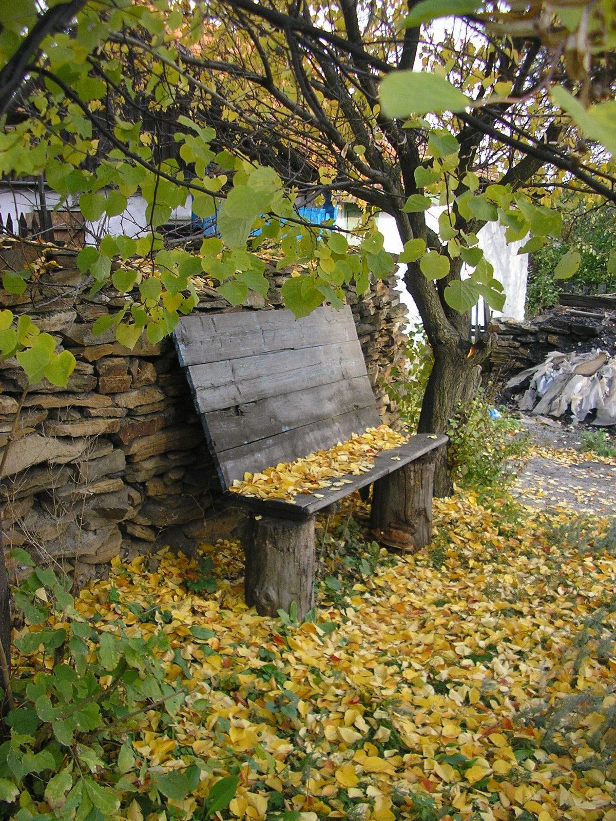 калина другие деревня скамья фото дольщиков жилого