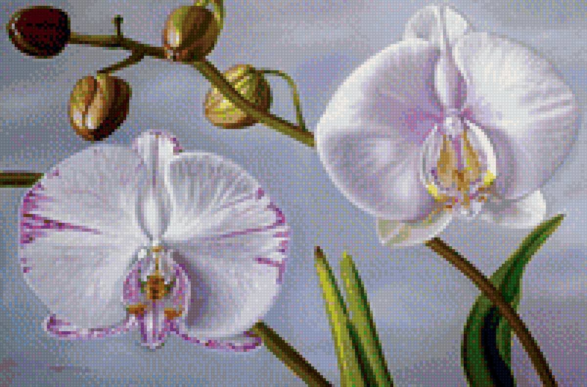 simple orchids paintings -