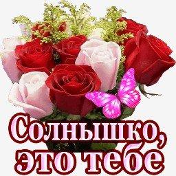 Картинки цветов с надписями для тебя солнышко, фиксики симка картинки
