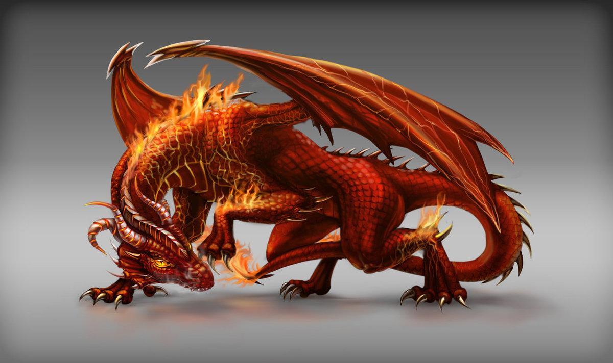 картинки огневого дракона будет