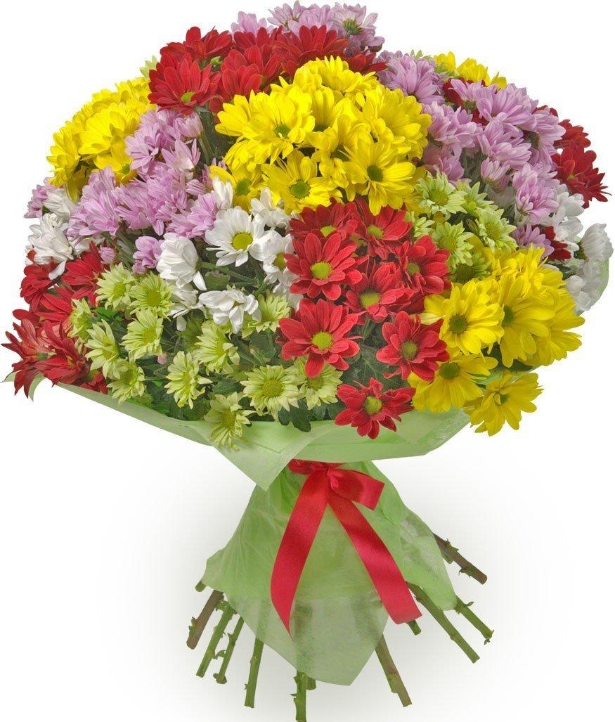 Растения, цветы букеты из цветов фото