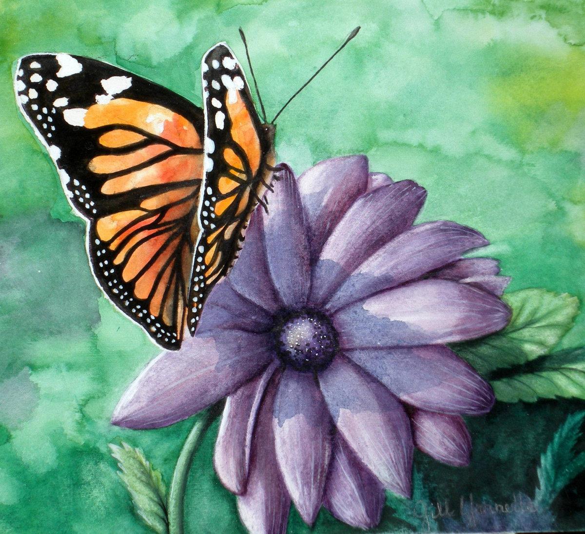 Фотки надписями, картинки бабочка на цветке для детей