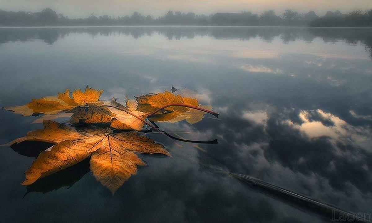 Открытка про осень про грусть, сон