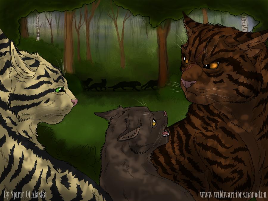 Картинки коты-воители битвы