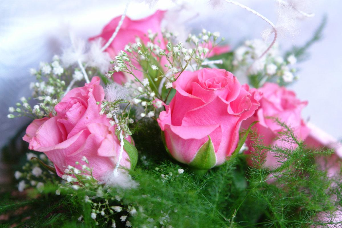 Открытки цветы с днем рождения прикольные