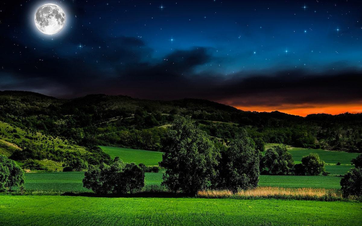 придают красивая ночь фото картинки популярностью