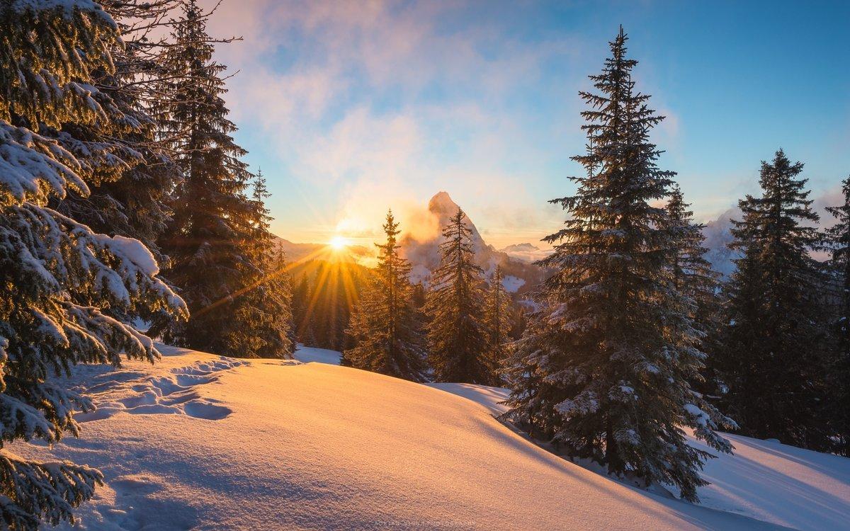 Картинки по запросу обои зима