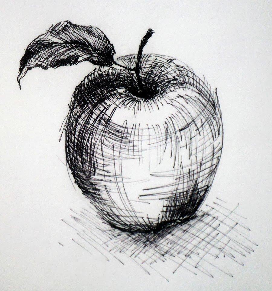 Яблоки карандаш картинки