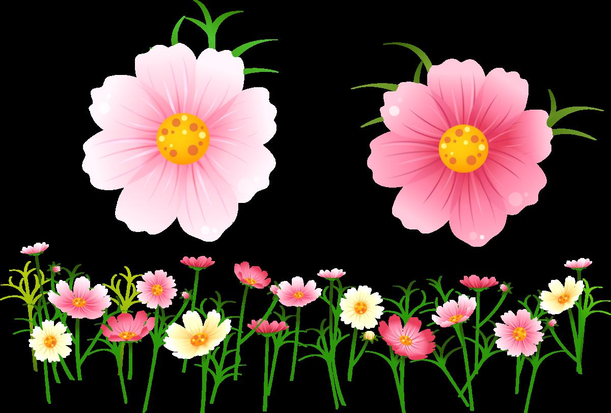 Летние цветы картинки для детей на прозрачном фоне, любимому мужу фото
