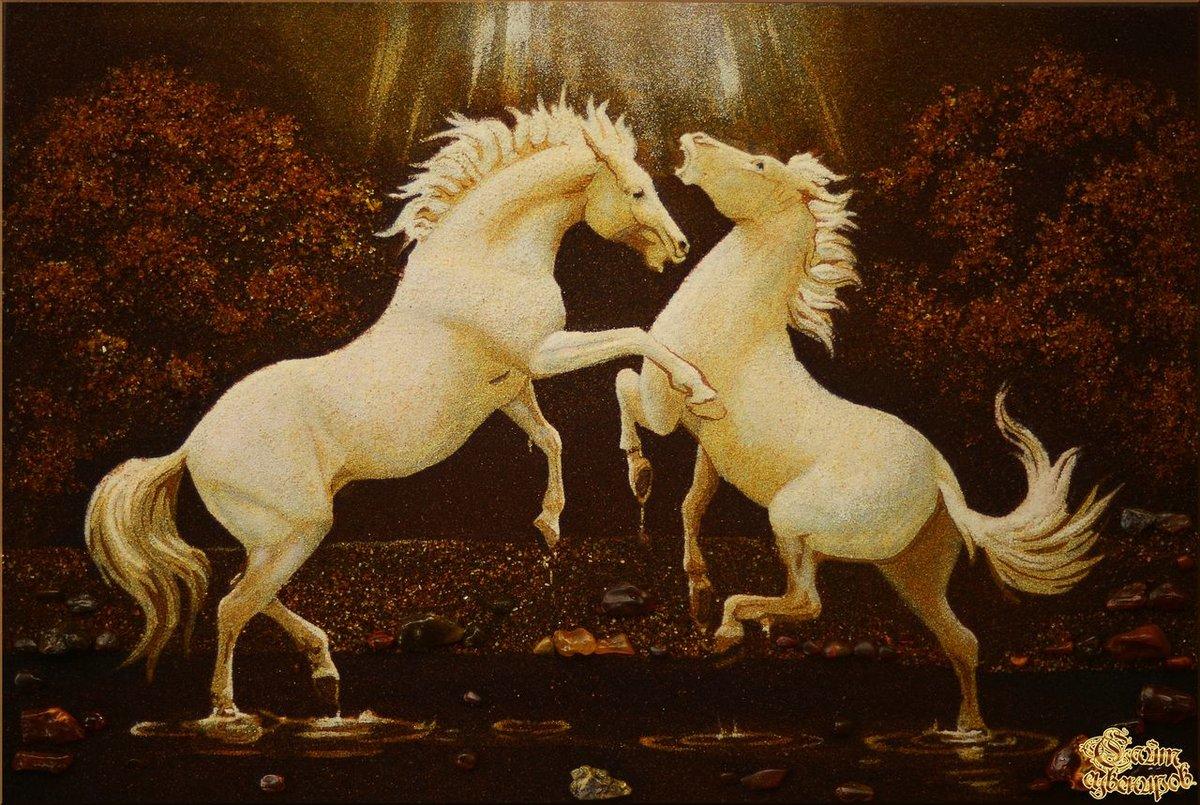 помощью картинки конь танцует мире существует столько