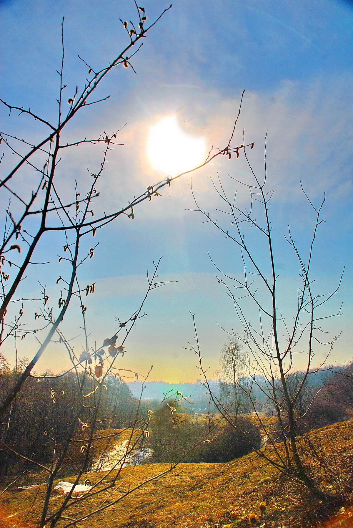 Картинки весенние солнце