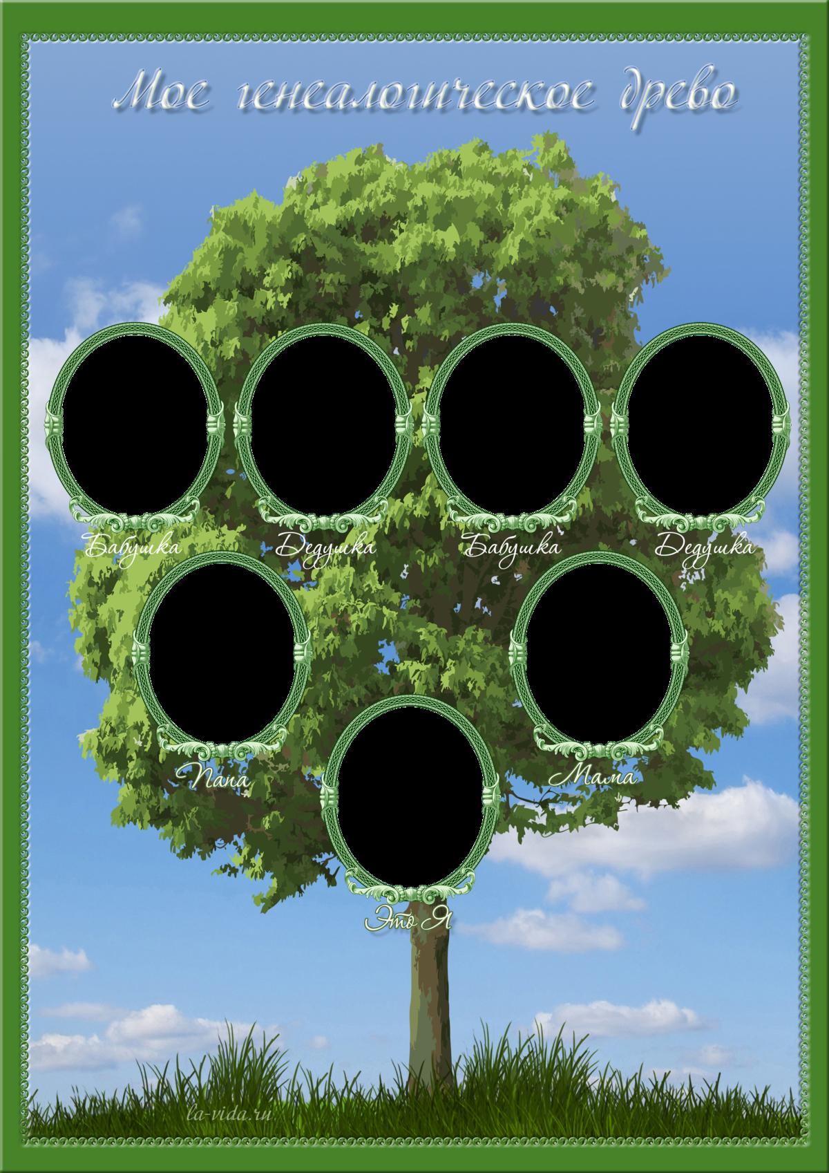 Генеалогическое древо моей семьи картинки