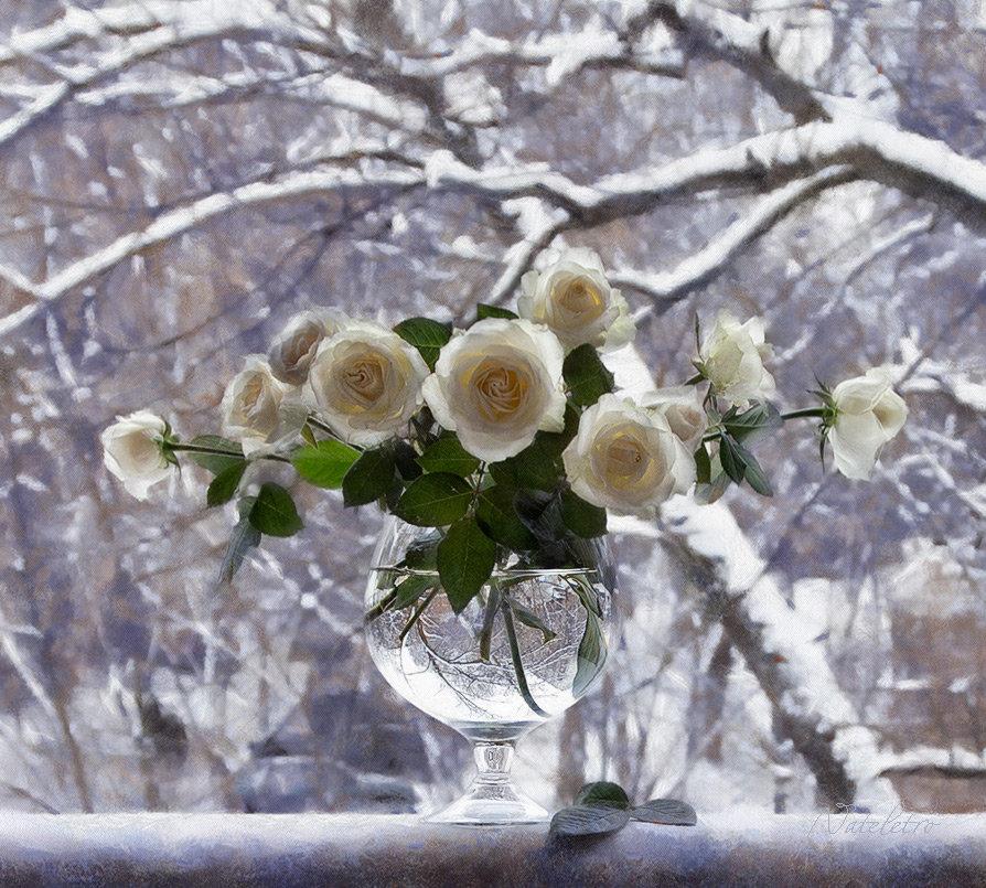 Открытку для, открытка цветы зима