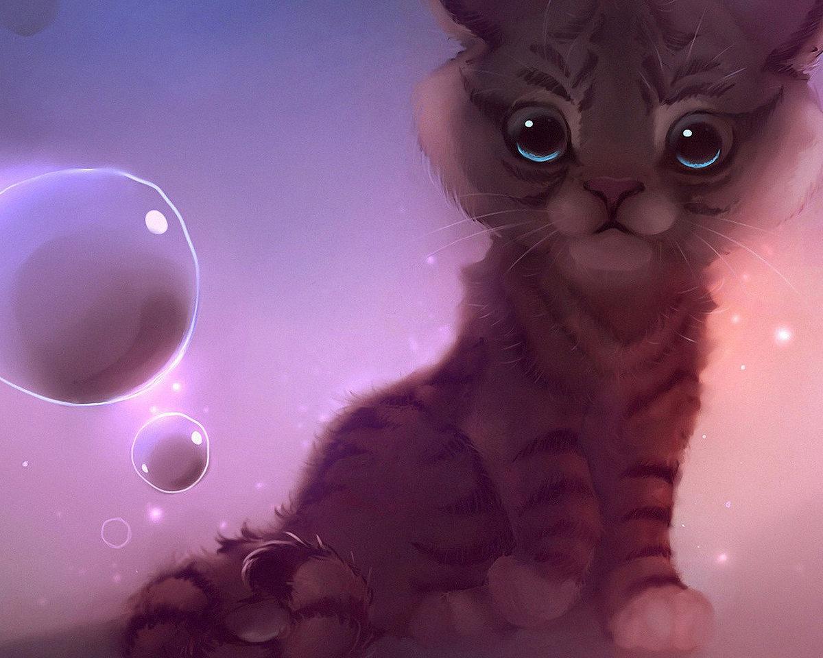 Днем рождения, картинки милых кошек аниме
