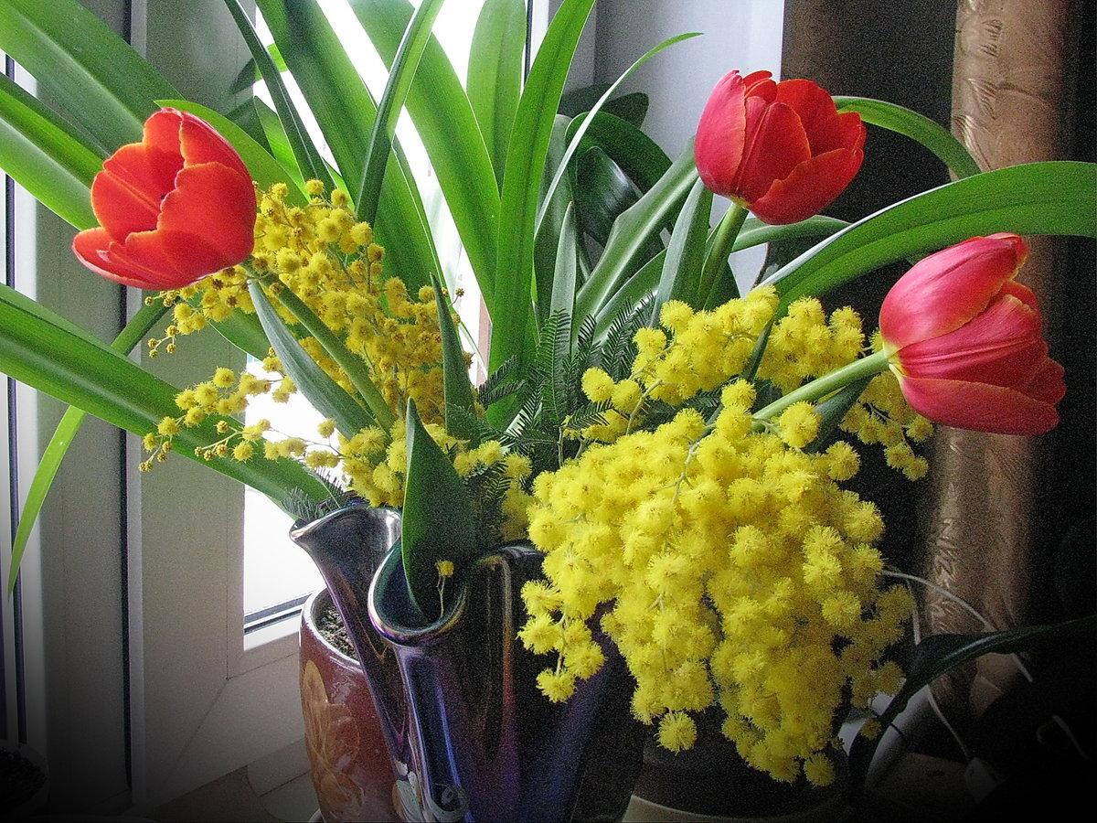 смешать размягчённым картинки с мимозами и тюльпанами какой-то