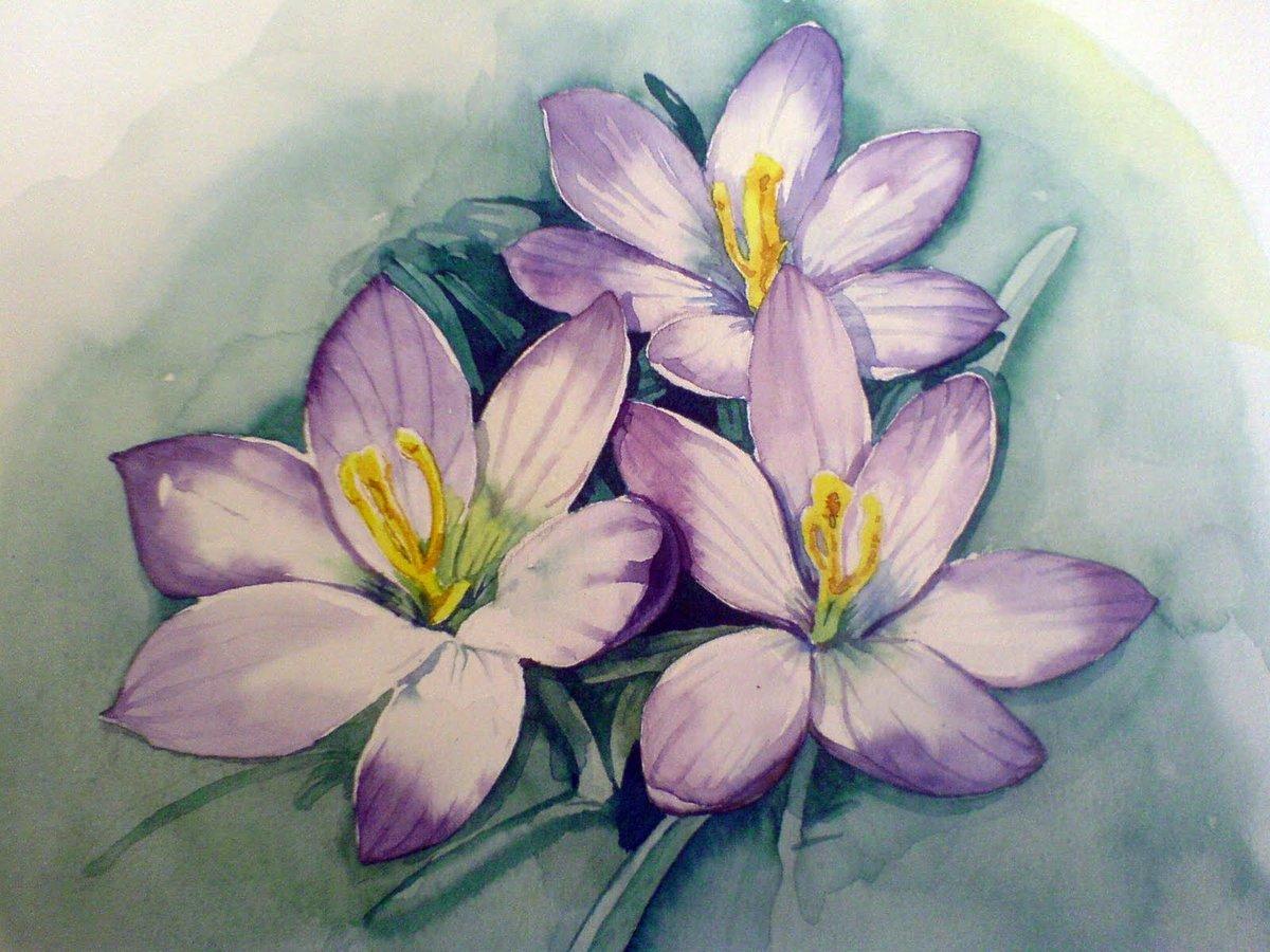 завязками очень фото цветы срисовать можете