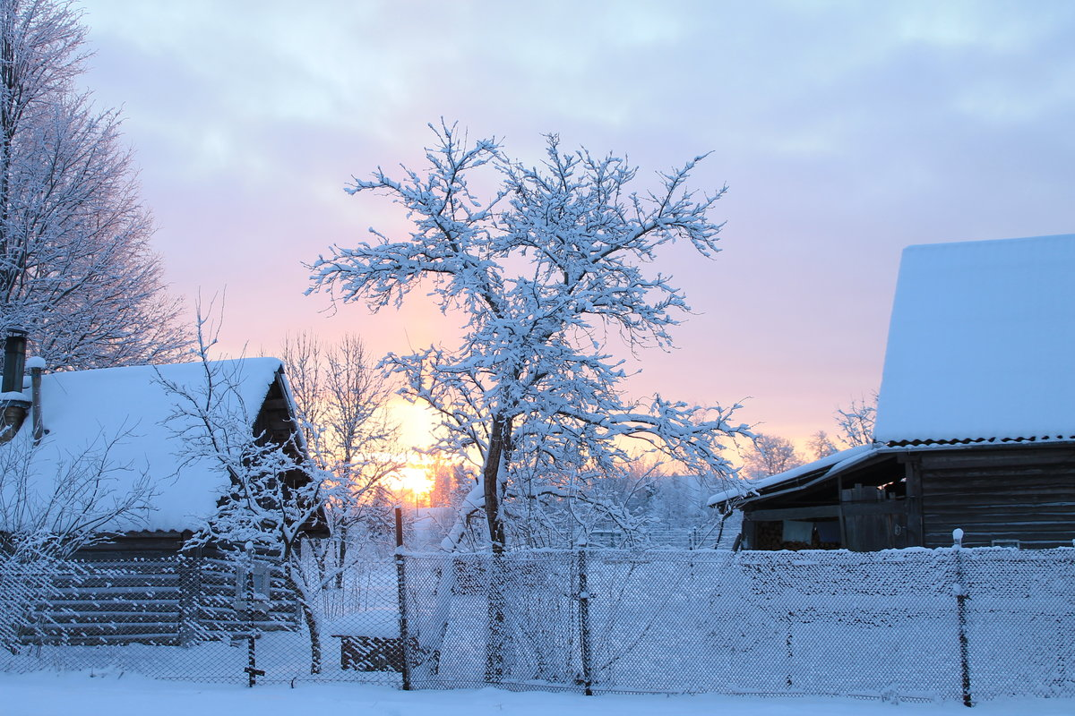 картинки зимнего утра в деревне написали конкретно
