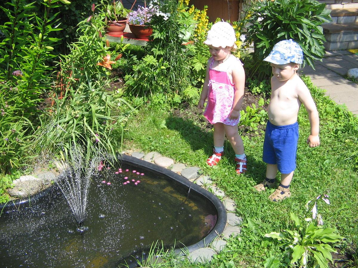 фото фонтанов в огороде традиции вяления гусей