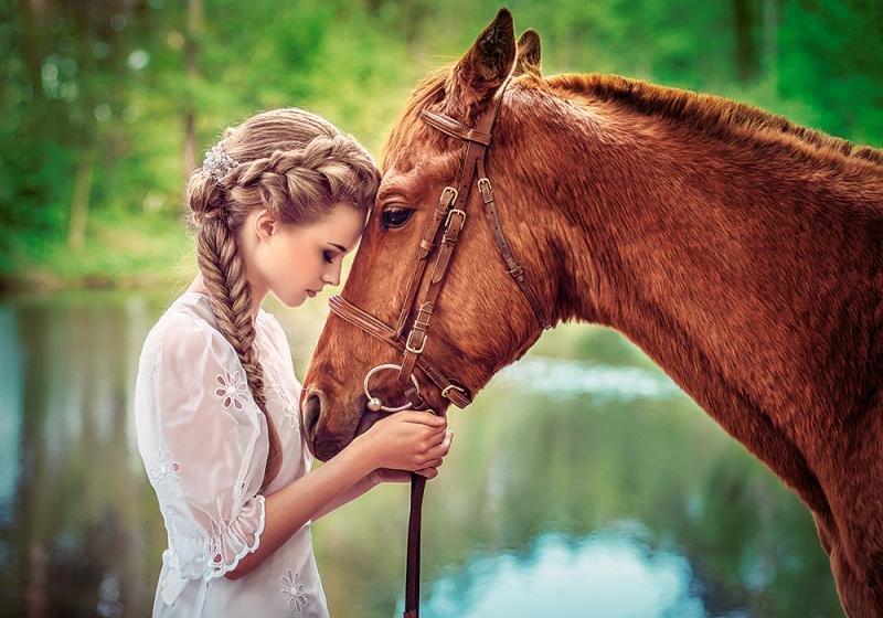 Рождество, картинки девушка и лошадь