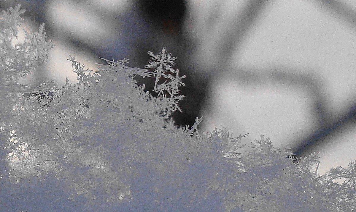 Закат в снегах картинки режиме