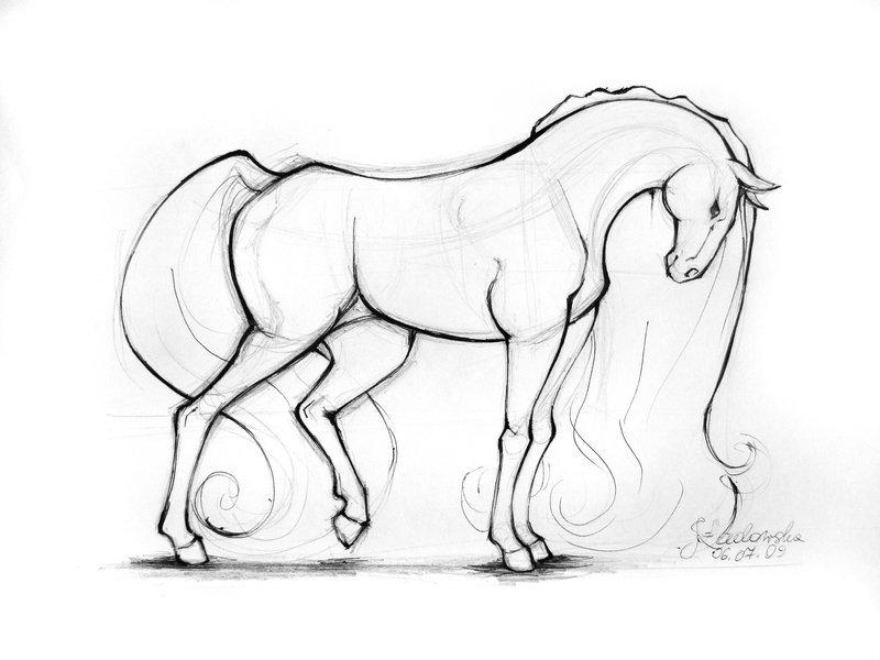 Маме, крутые картинки лошадей для срисовки