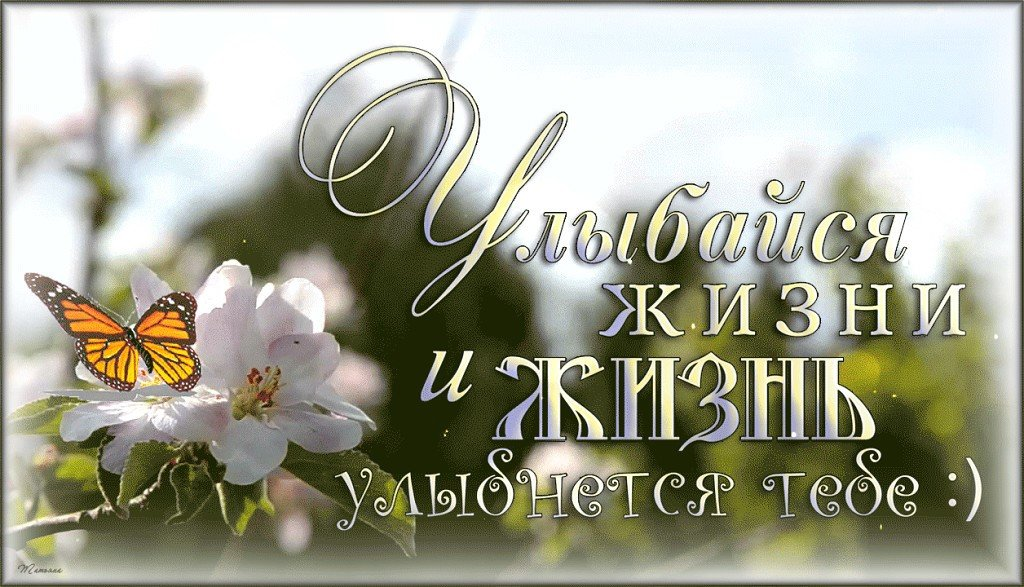 Перец болгарский, красивые картинки с надписью жизнь прекрасна