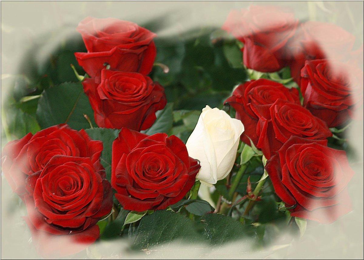 Открытка своими, открытка розы другу в контакте