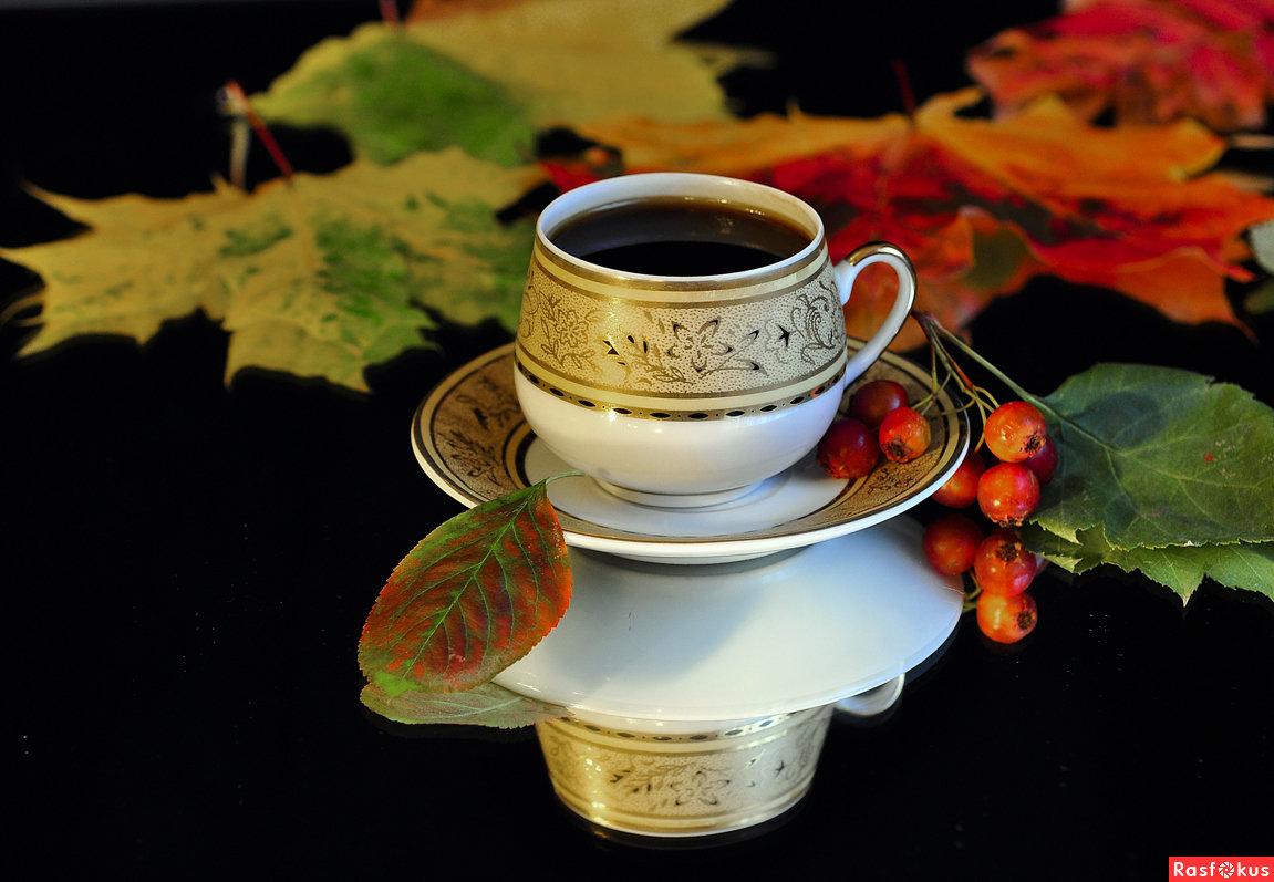 Открытки осень чай, открытку новый