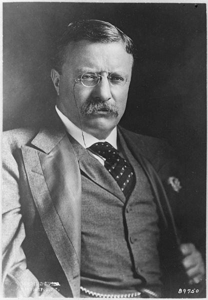2 июня 1905 года президент США Рузвельт согласился стать посредником на переговорах о заключении мира в Русско-японской войне