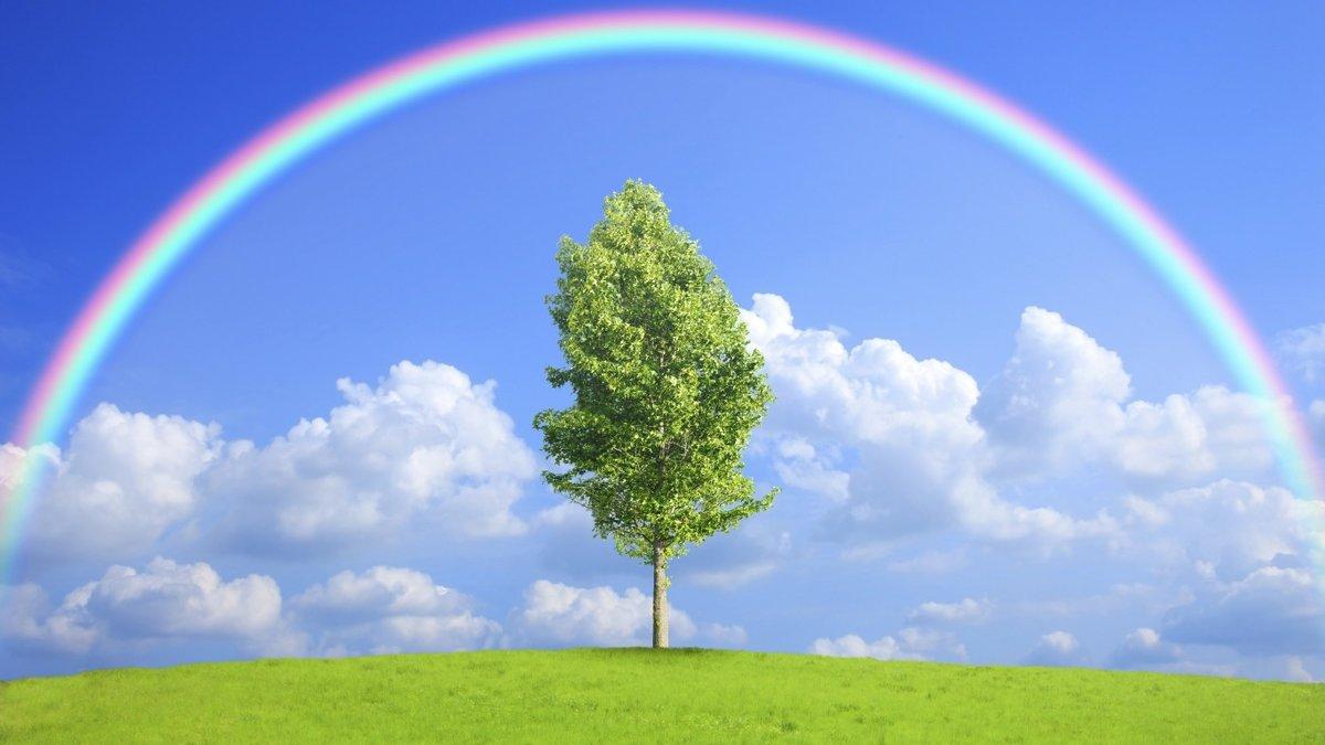 Картинки, открытки с радугой и природой