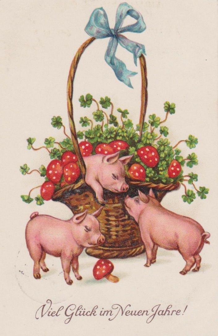 Открытки к году свиньи ссср, первого снега надписями