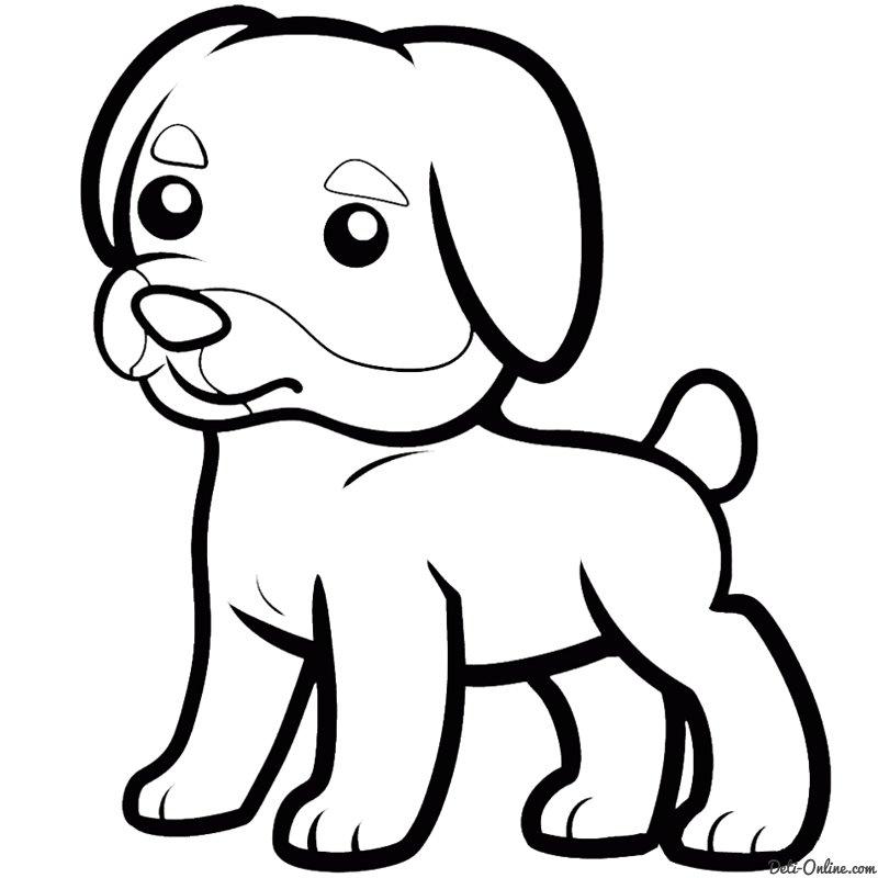 Раскрашивание картинок собака