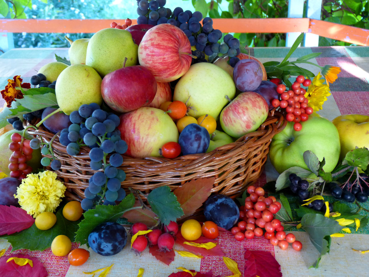 Открытка с ягодами и фруктами, днем рождения опера