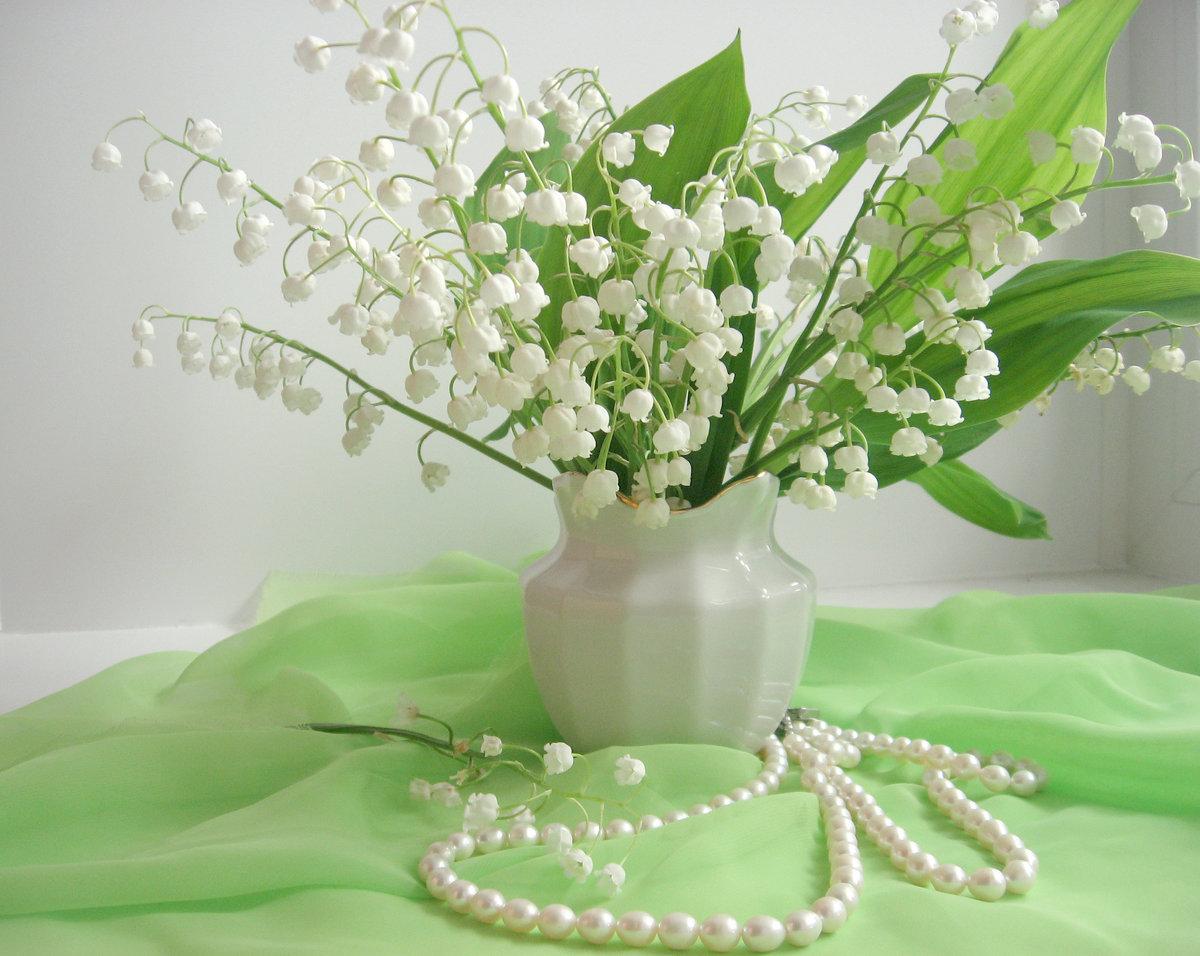 Открытка цветы ландыши, енотами прикольные