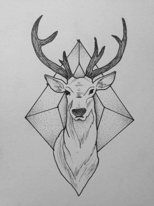 Рисунки оленя карандашом для срисовки