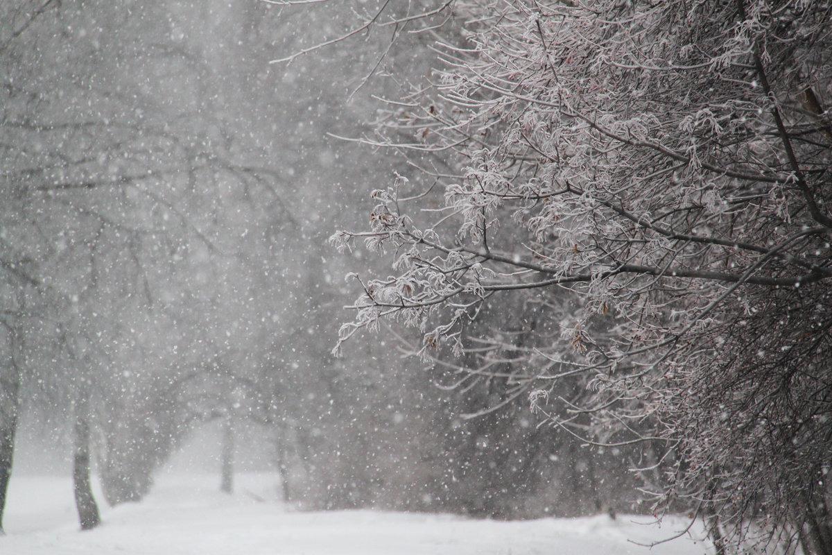 руки промышленная снегопад метель фото информация, курорт