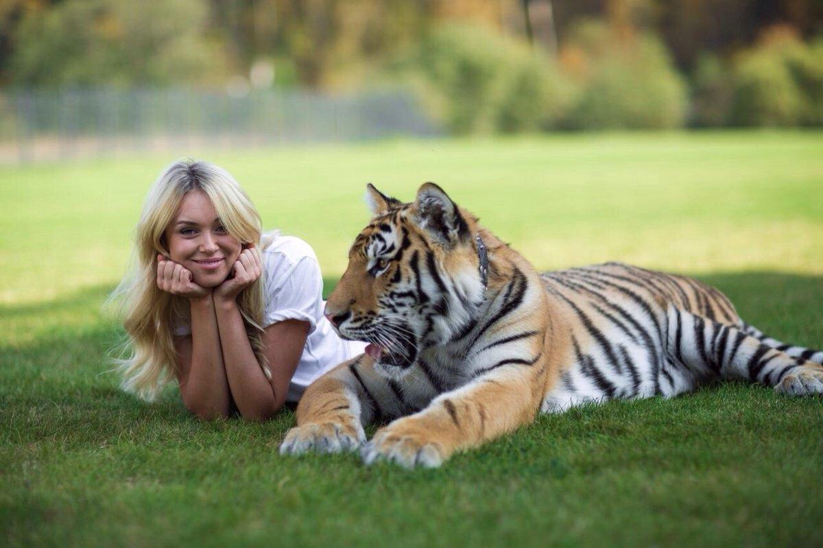 Девушка с тигром фото