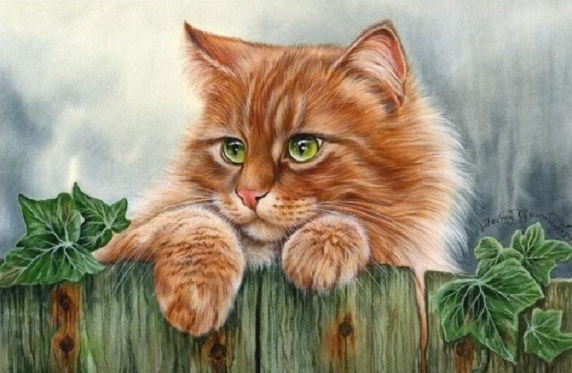 Для дедушки, открытки с нарисованными кошками