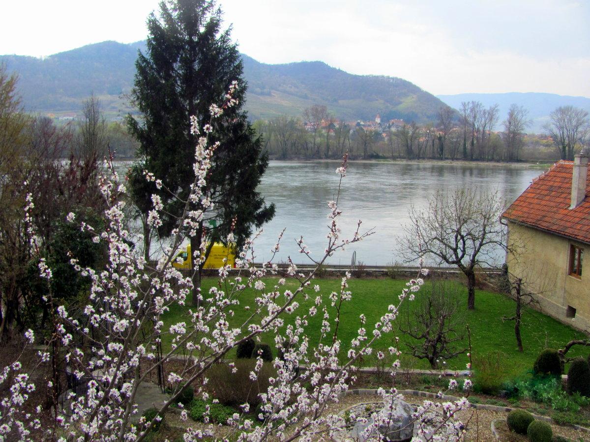Весной Австрия становится наполненной ароматами цветения плодовых деревьев