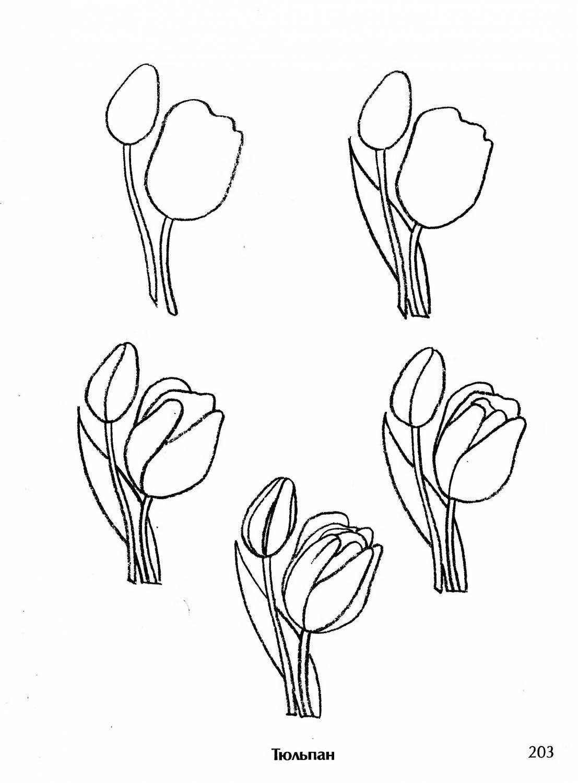 Как научиться рисовать открытку