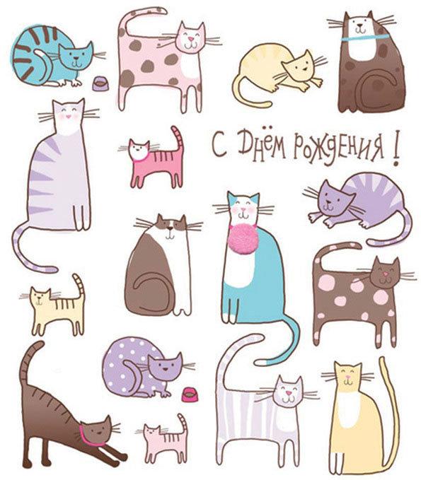 Днем, картинки на день рождения с котами